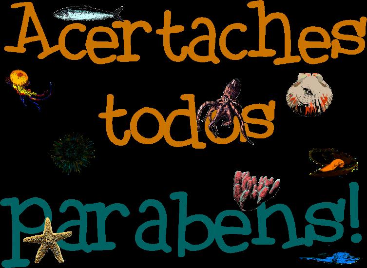 becho10
