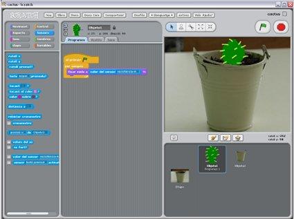 cactus_scratch2.jpg